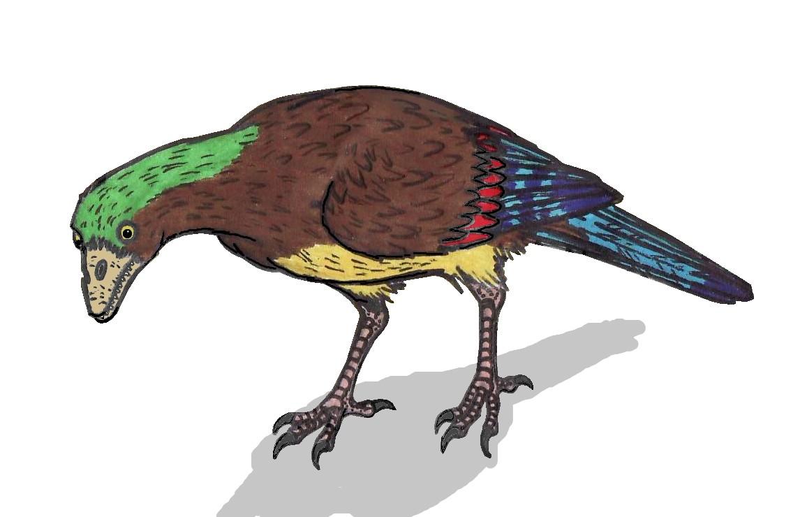 Aberratiodontus