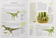 Jurassic theropods