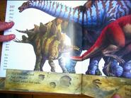 Dinosaur feathers 8