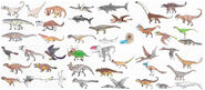 Collection of Mesozoic species