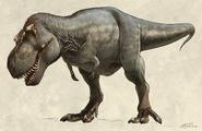 Illustration of Scotty the Tyrannosaurus rex