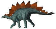 Stegosaurus8370