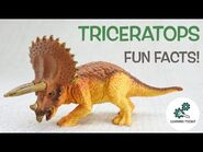 TRICERATOPS FACTS! - Fun & Educational - Dinosaurs For Kids - Best Dinosaur Facts