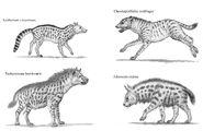 Prehistoric hyenas by willemsvdmerwe d6bomrt