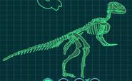 Скелет квантасзавр