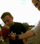 Cactusincident8