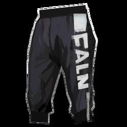 Pants faln.png