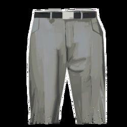 Pants interisolar white.png