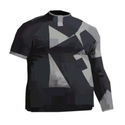 Shirt faln.png
