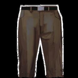 Pants interisolar.png