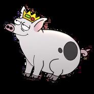 Pig hi res