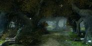 Tree 01 2