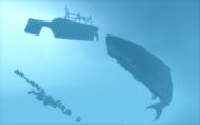 Void, whale and trawler