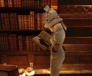 Lady boyle book