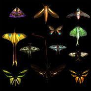 Бабочки текстуры 2