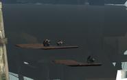 Rats on driftwood