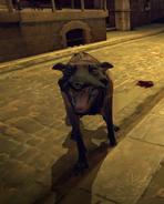Wolfhound bridge02
