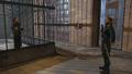Sokolov havelock cage