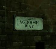 Agroosh Way1