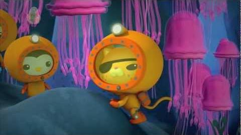 """The Octonauts and """"The Jellyfish Bloom"""""""
