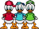 Huey, Dewey & Louie