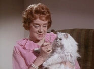 Elsa lanchester my dog the thief
