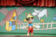 Pinocchiosign