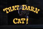 That-darn-cat-disneyscreencaps.com-159