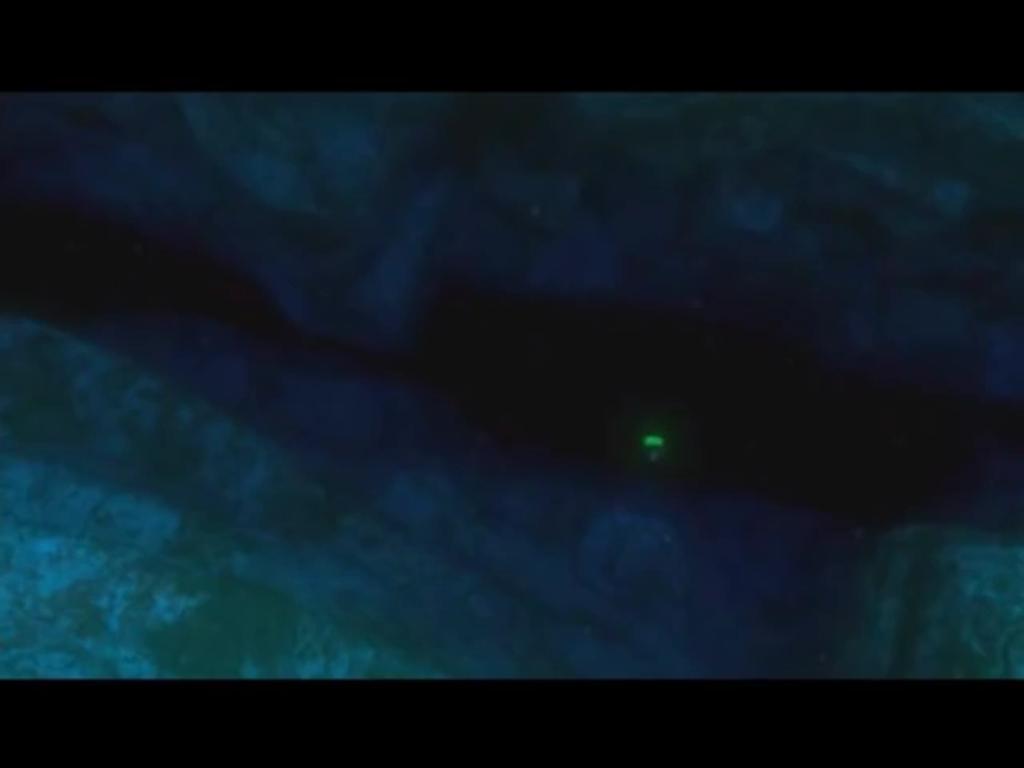 Abismo (Procurando Nemo)