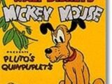 Pluto's Quin-puplets