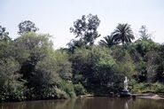 Discovery River Unicorn