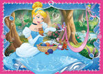 Cinderella and her friends