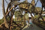 Pandora Landscape 08