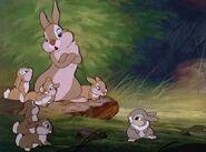 Bambi-disneyscreencaps.com-918 (1)