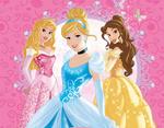 Disney Princess Redesign 17