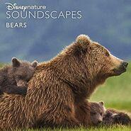 Disneynature Soundscapes Bears