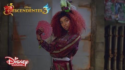 Conheça a Celia Descendentes 3