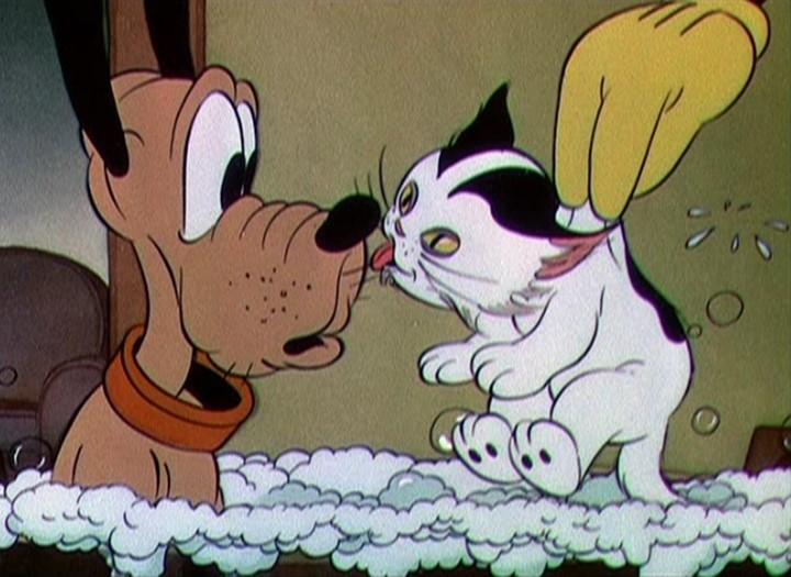 Kitten (Pluto's Judgement Day)