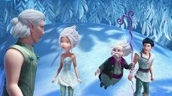Феи Тайна зимнего леса-10