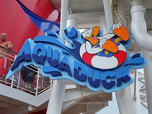 The AquaDuck