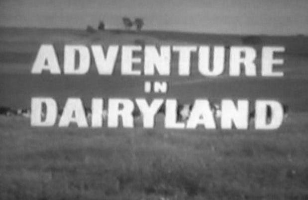 Adventure in Dairyland