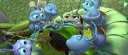 Bugs-life-disneyscreencaps.com-5913