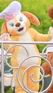 Cookie Hong Kong Disneyland