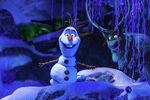 Olaf and Sven FEA