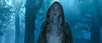 Aurora in the woods