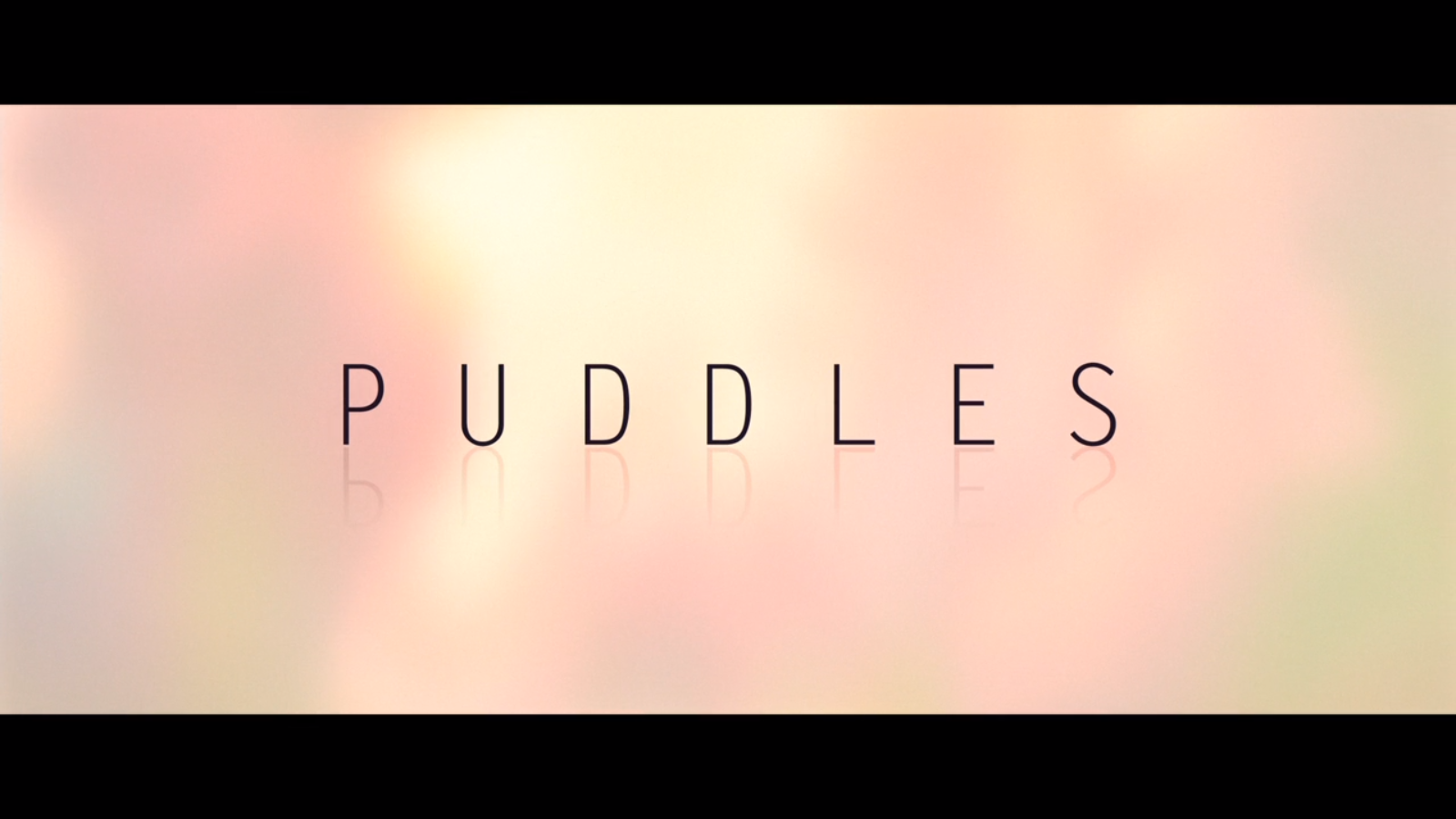 Puddles (Short Circuit)