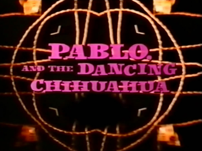 Pablo and the Dancing Chihuahua