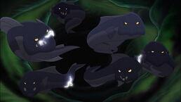 Electric Eels.jpg