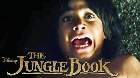 THE JUNGLE BOOK - Entspann dich - Ab 14