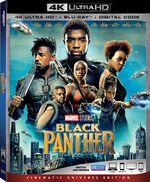 Black Panther UHD.jpeg